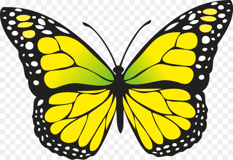 Для детей, картинки для детей рисованные бабочка