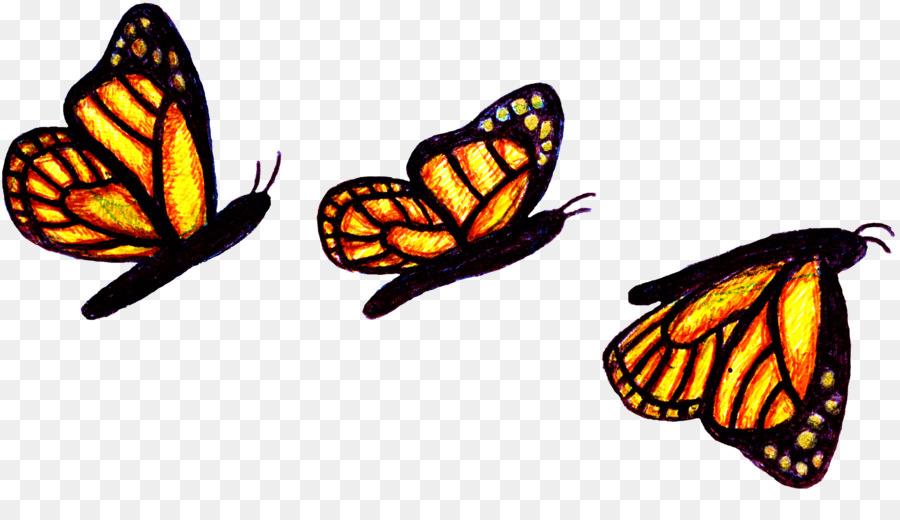 Сделать текст, анимация бабочка картинки