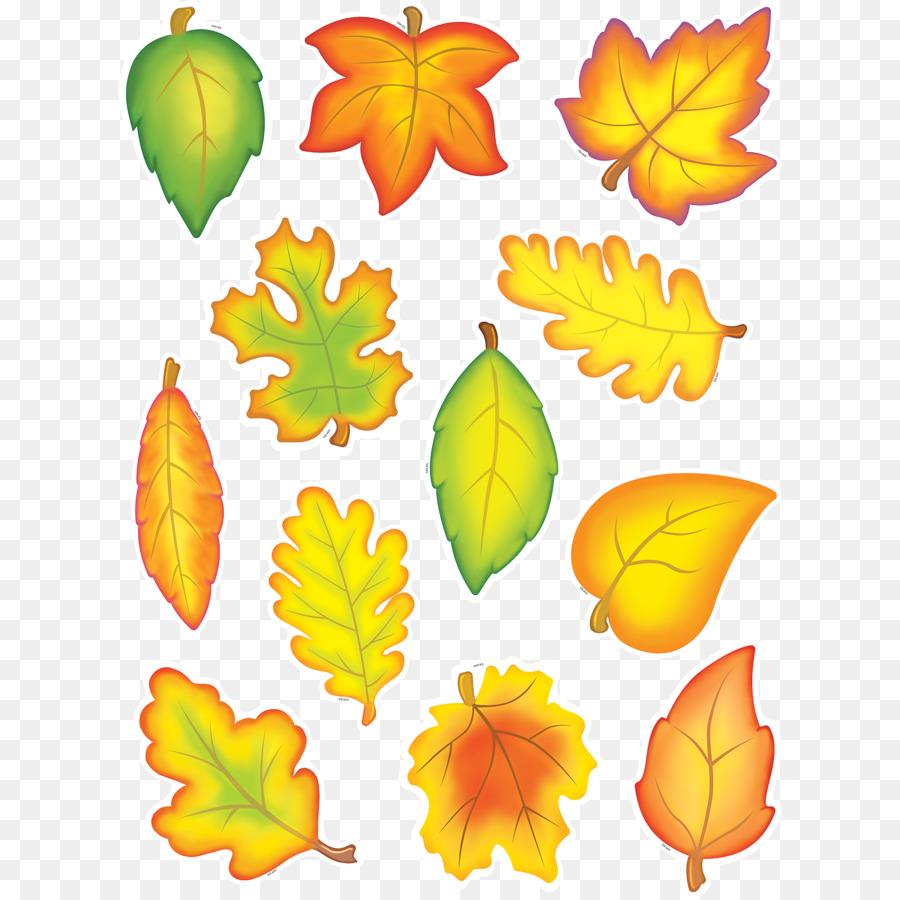 маленькие картинки листьев после тщательного осмотра