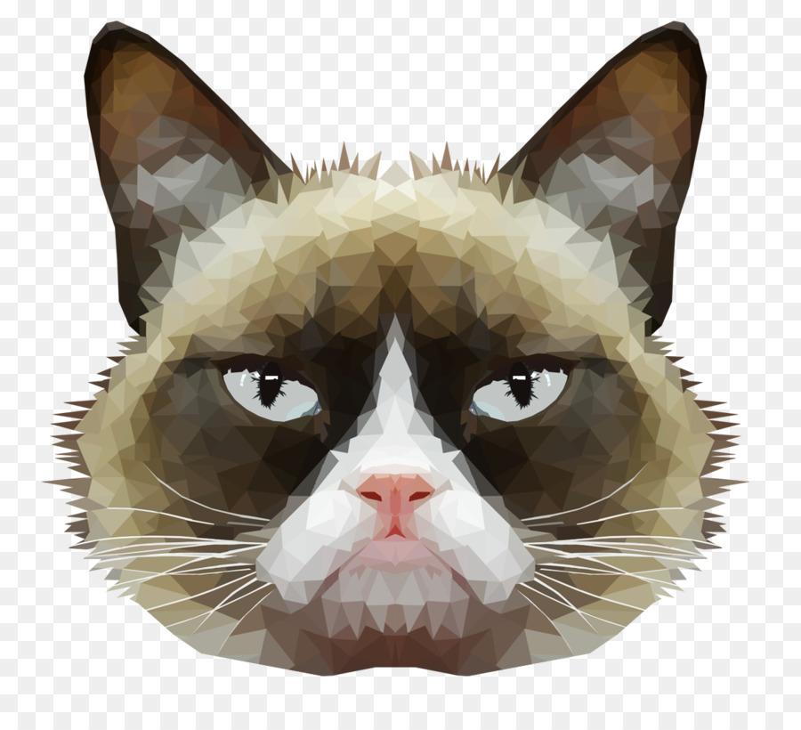 картинка голова кошки на белом фоне