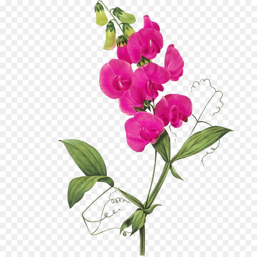 Открытки ботаника, днем рождения