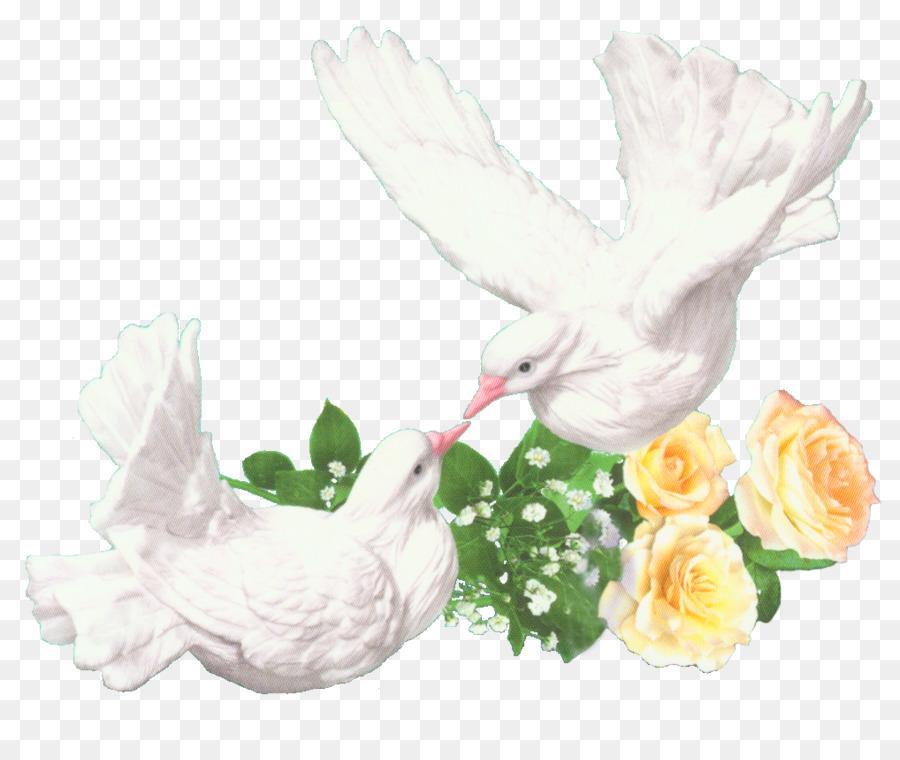 Свадебные голуби открытки