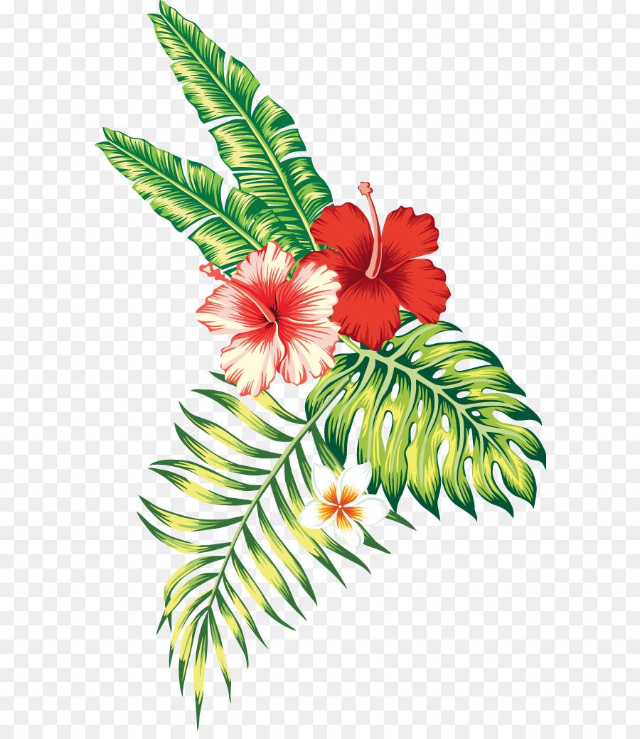 Приколы картинки, экзотические цветы картинки вектор