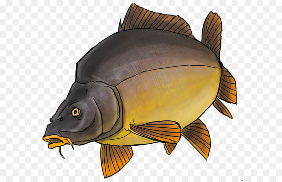 Картинка рисованная рыба