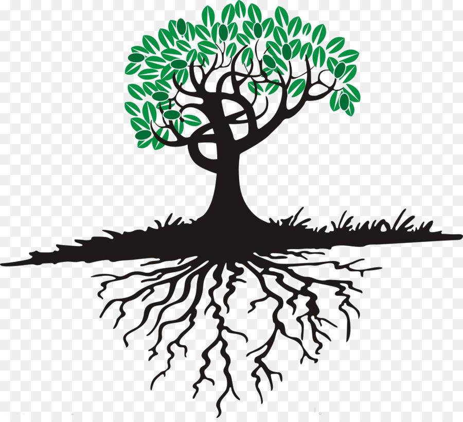 Картинка дерева с корнем стволом и ветвями