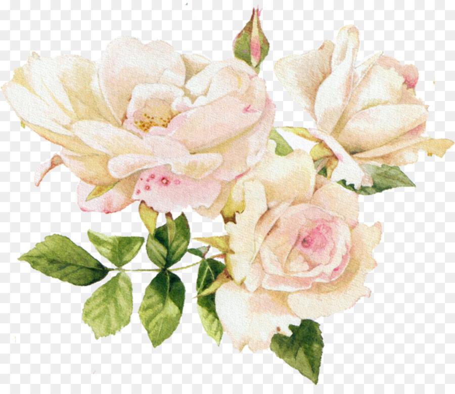 нежные цветы картинки на прозрачном фоне основному