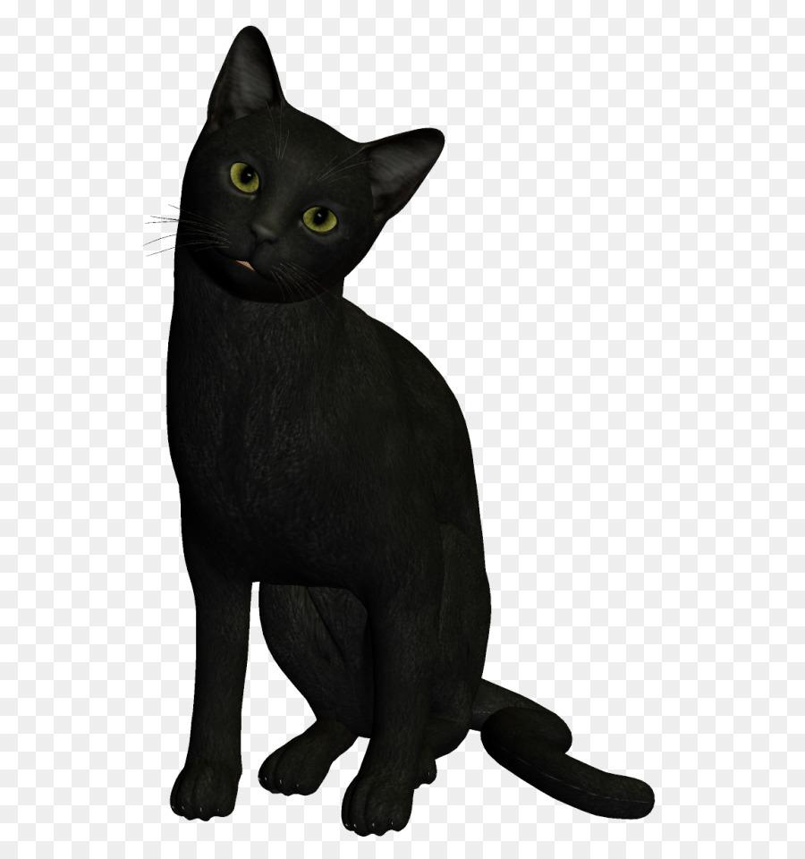 трех картинка черного кота без фона сделанные нашем