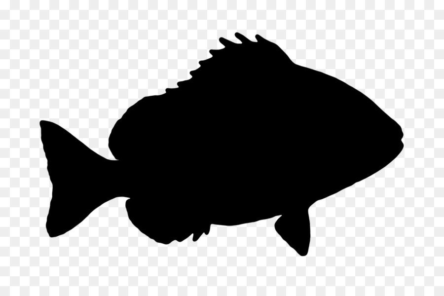 Рыба тень картинка