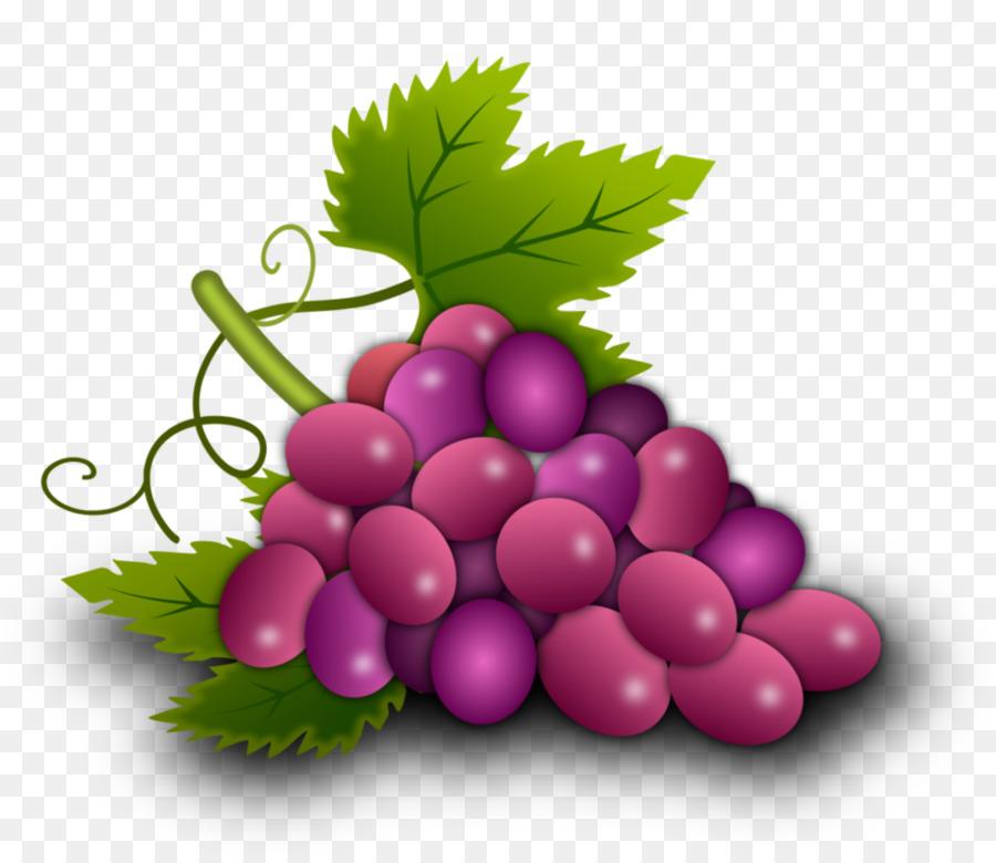 векторные картинки винограда поддерживает организации