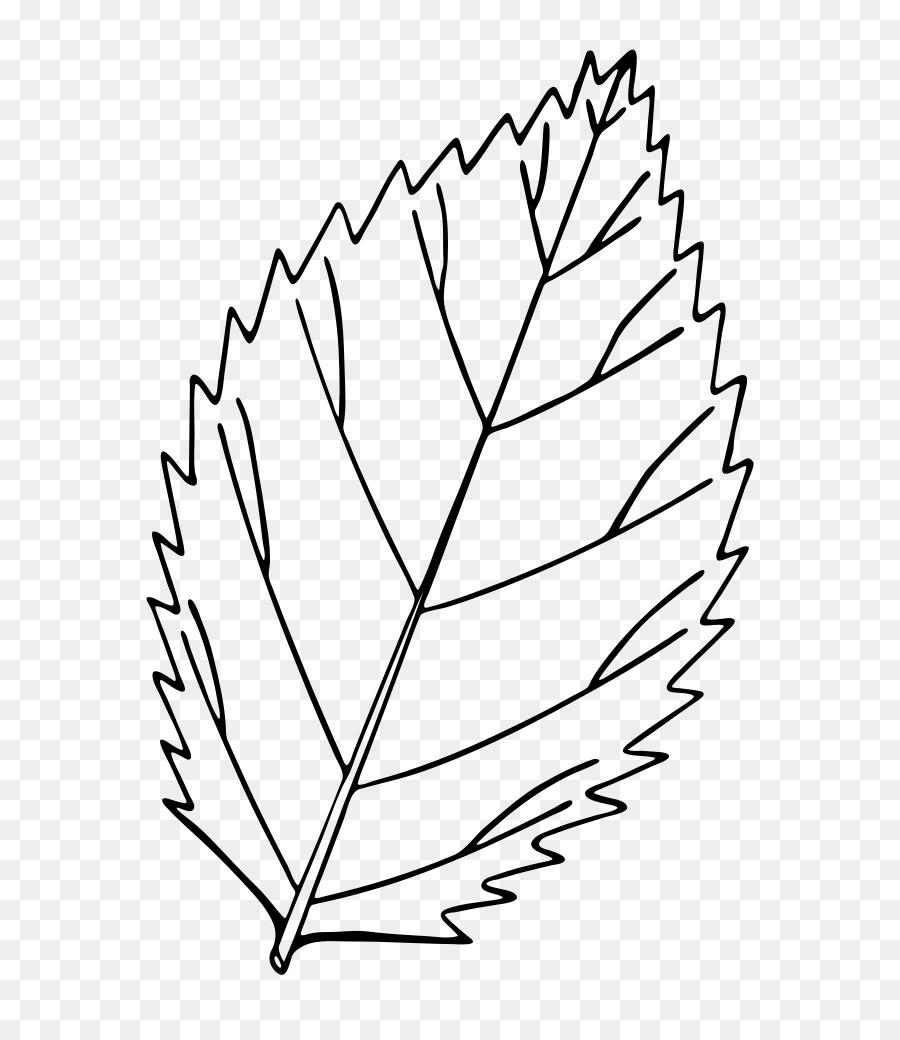 свадебного листья картинки как нарисовать ел