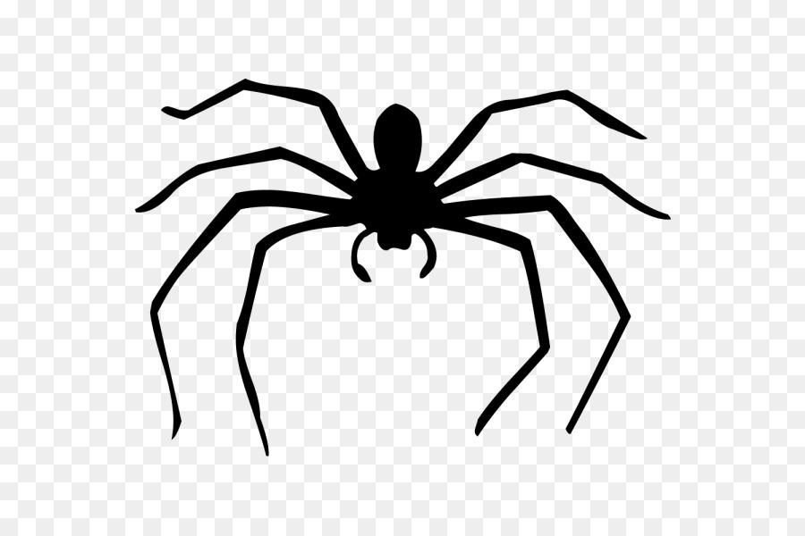 Рисунки пауков для детей