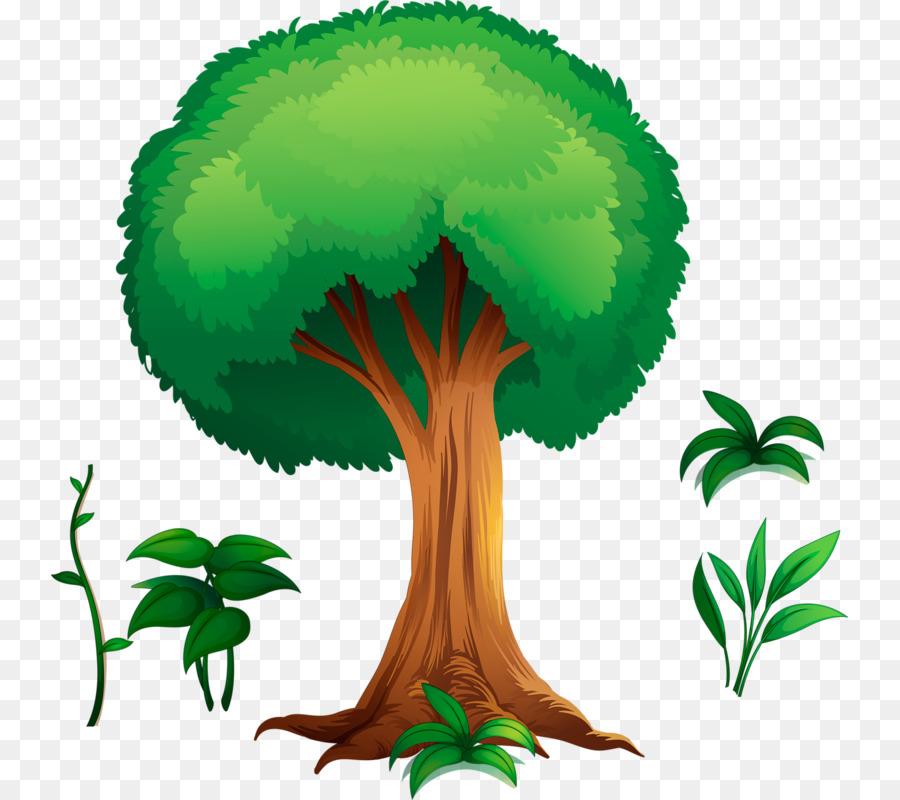 обморожении деревья рисунок картинки маби