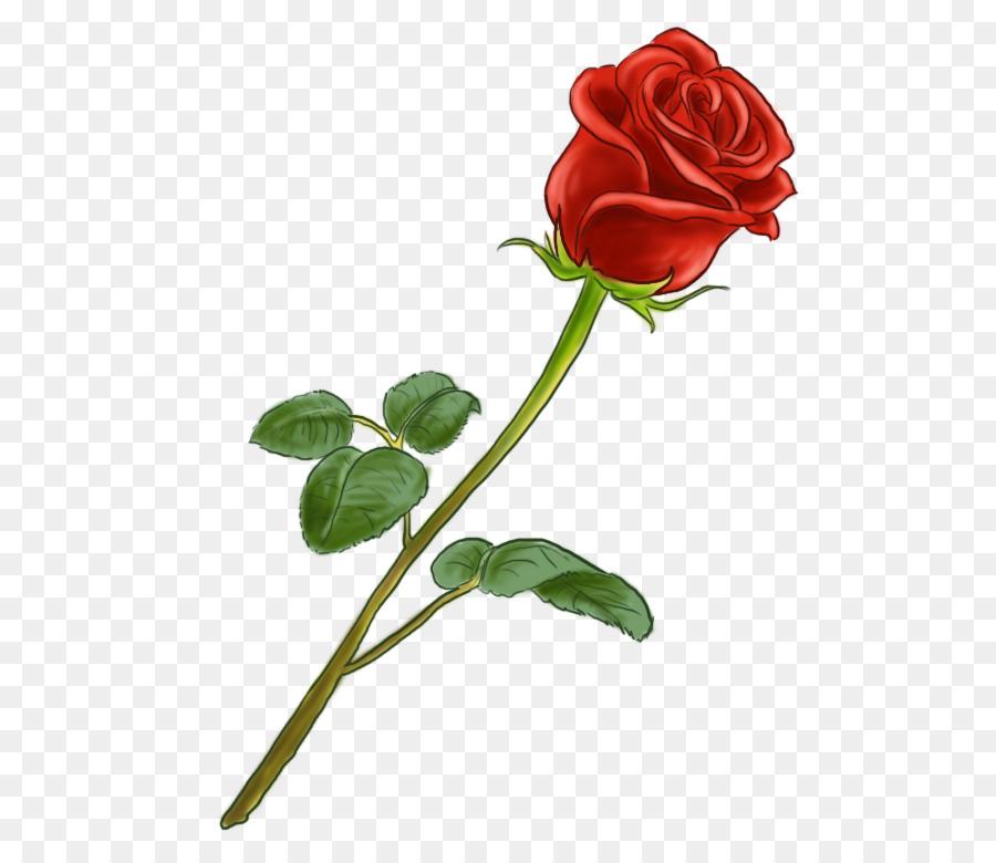 там рисунок розы картинки вот, фоты большем
