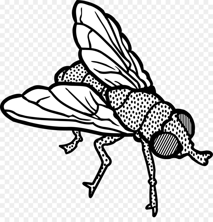 Рисунок мухи картинки