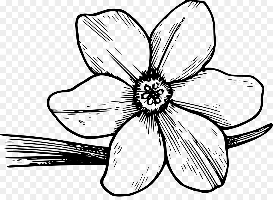 Картинка цветка черно-белая