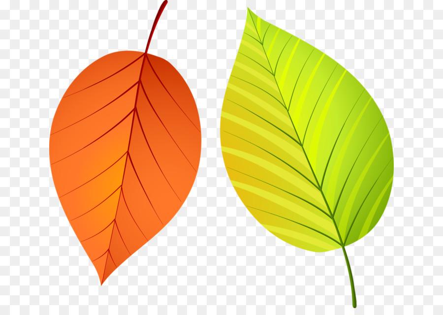 Днем рождения, картинки осень листья для детей