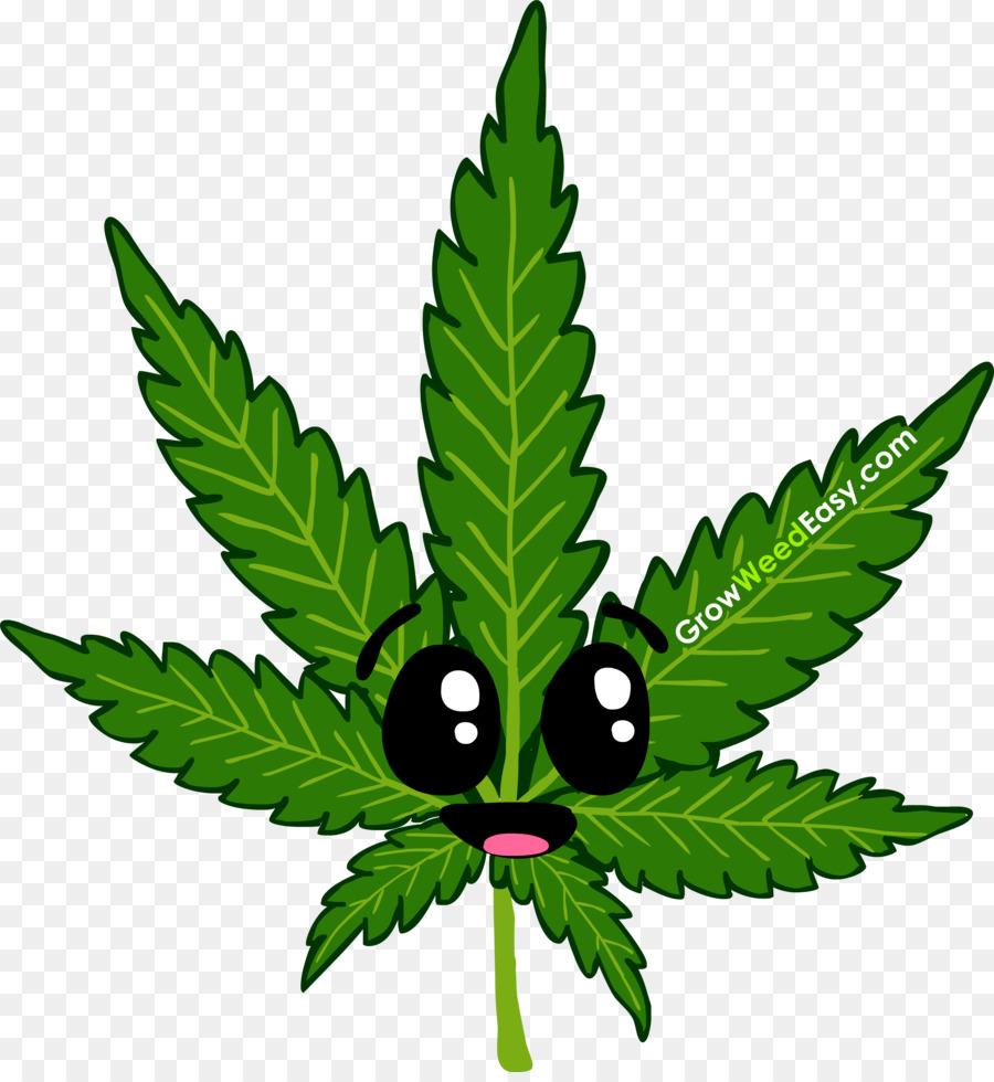 влияние марихуаны на паркинсона