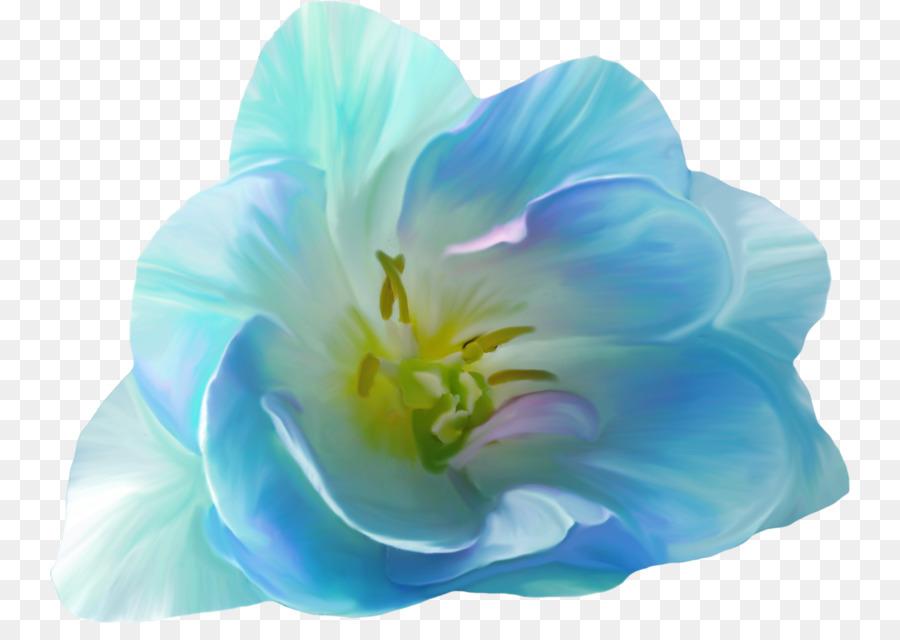 Картинки на прозрачной основе цветы