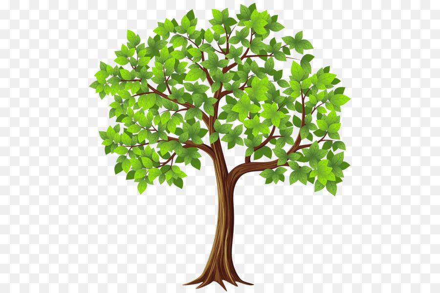 Картинки в векторе дерево
