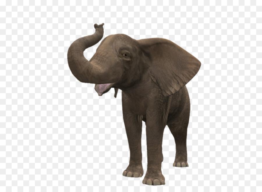 картинки предметов слон отличить