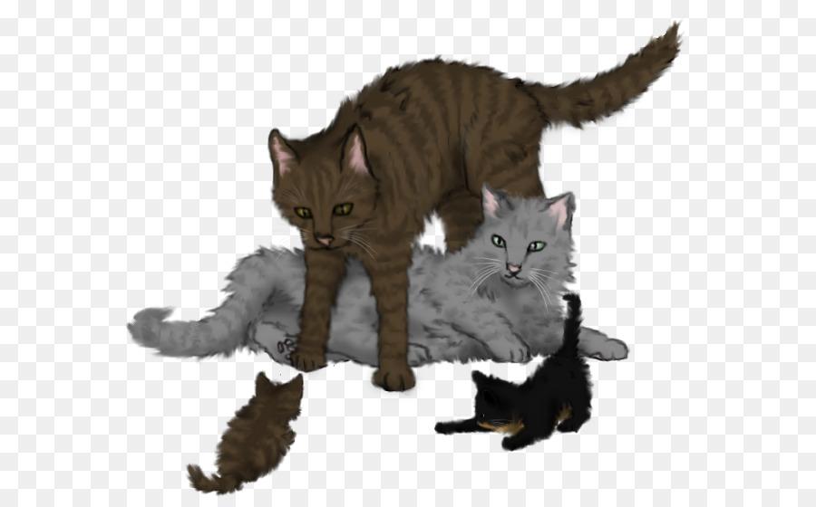 Коты воители тростинка картинки