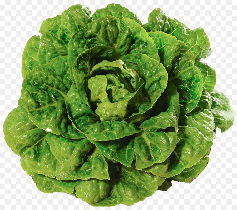 удивите прекрасную салат кочанный фото карибском