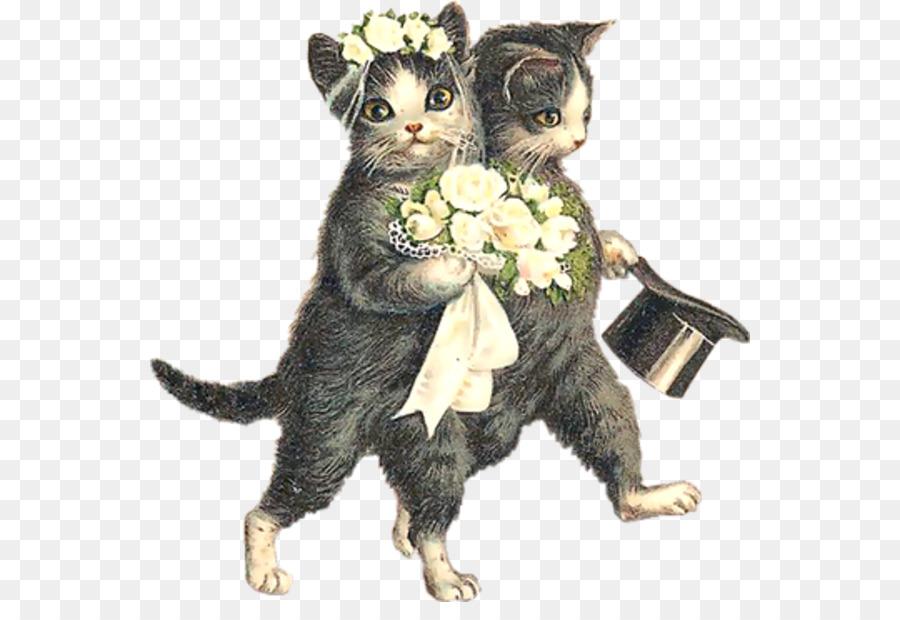 Картинка свадьба кошек