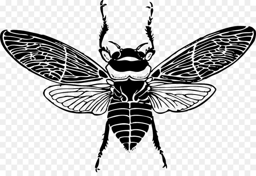 просторная пчелы в графике картинки анимированные картинки, также