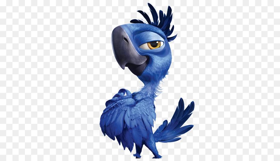 Рио картинка попугай