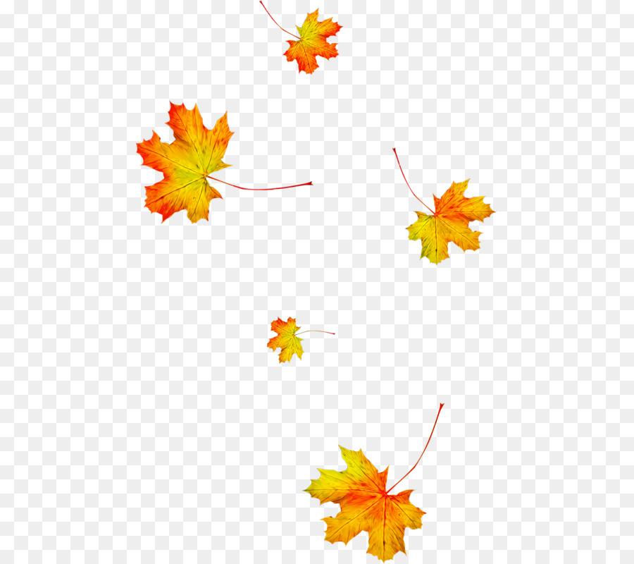Картинки осенние листья с анимацией, марта картинки фото