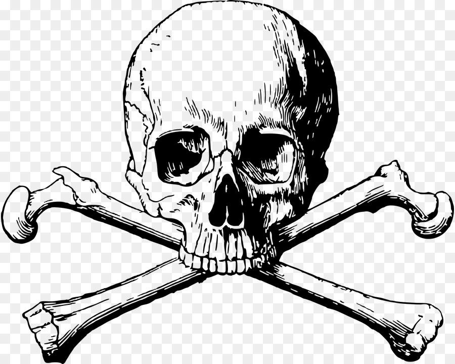 любого смотреть картинки череп и кости настолько мне