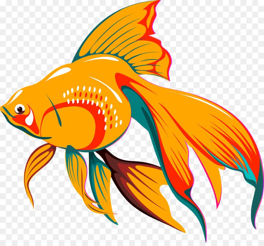 Картинки рыбка золотая, среда прикольные