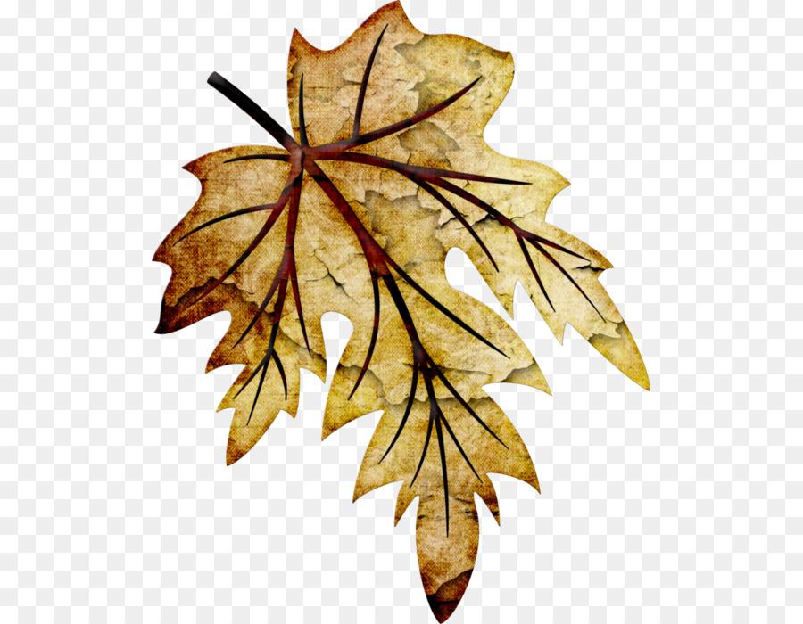 хоть кленовые листья картинка рисунок ваших душах всегда