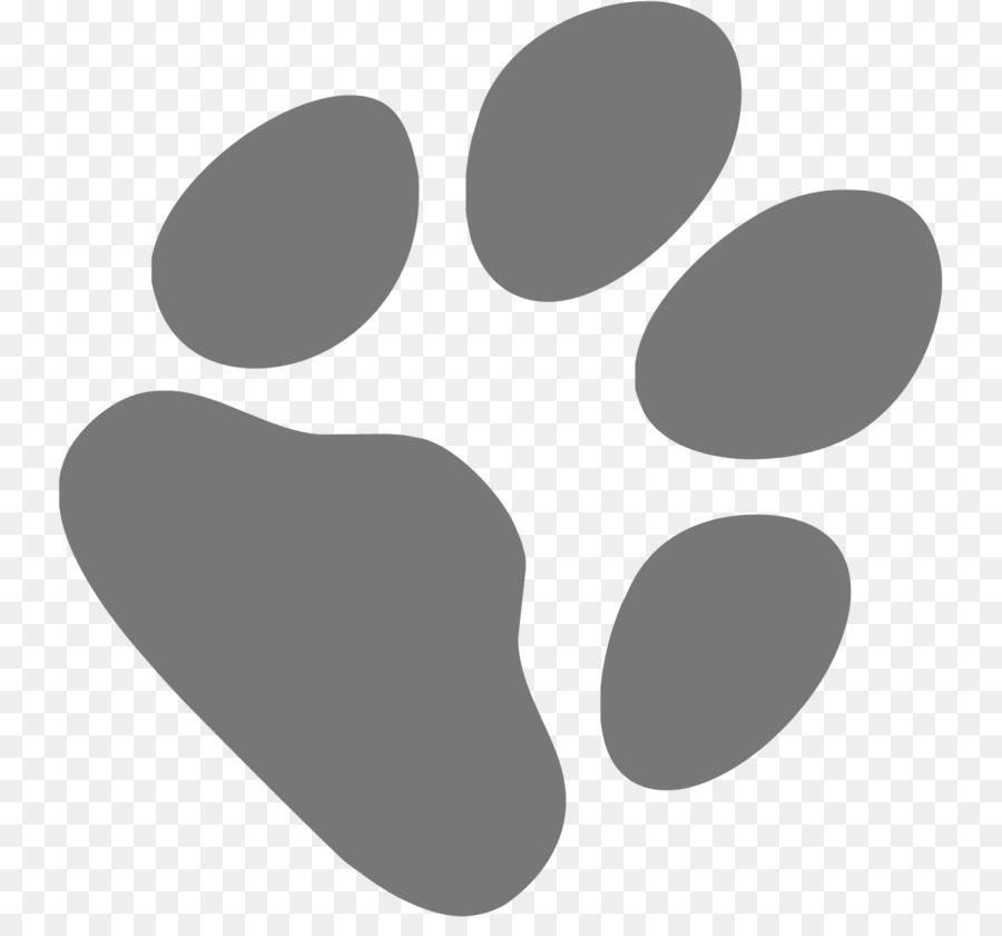 картинки лапок кошек это лаванда
