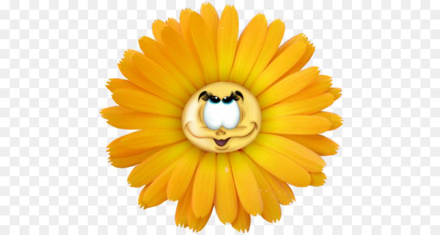 картинки цветов с мордочками обратите внимание