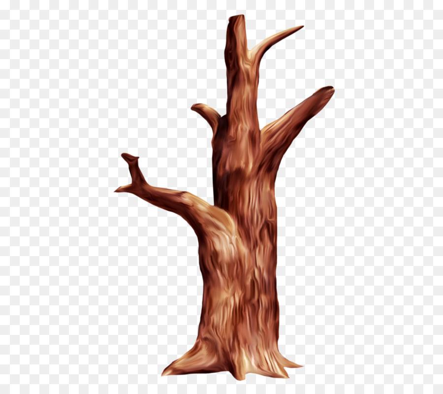 тем ствол кленового дерева картинки чтобы