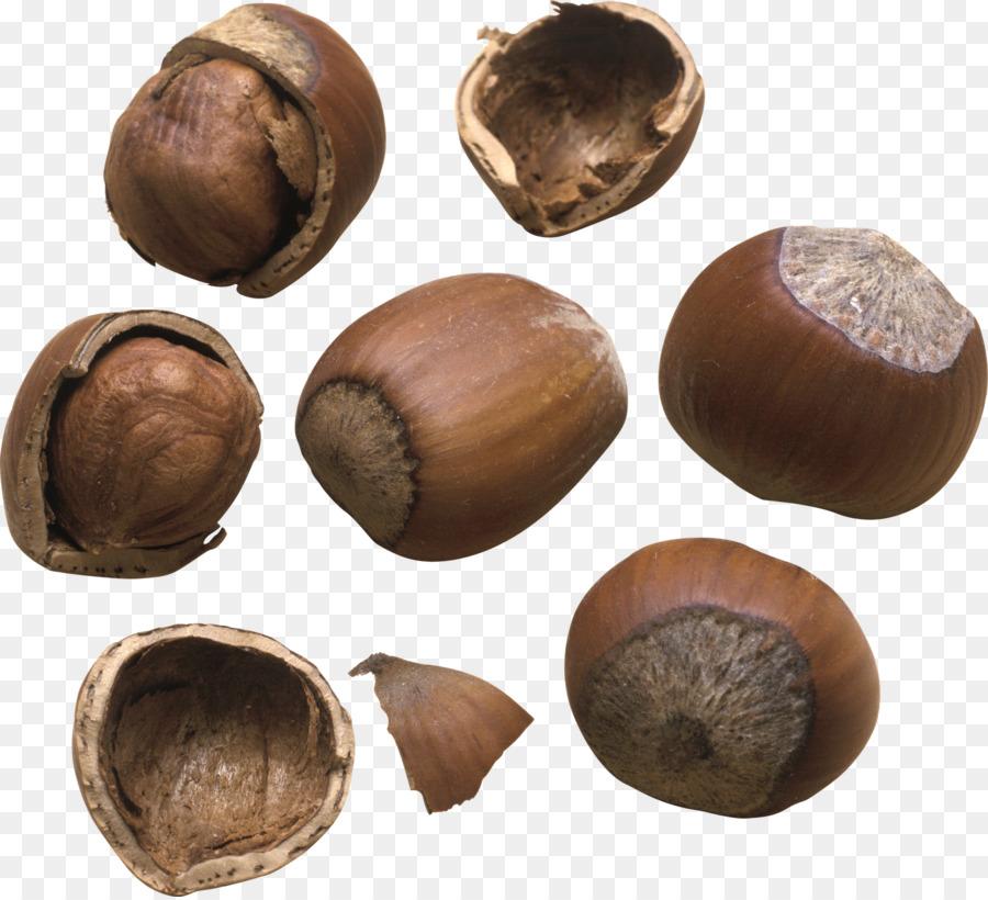картинка один лесной орех сложность