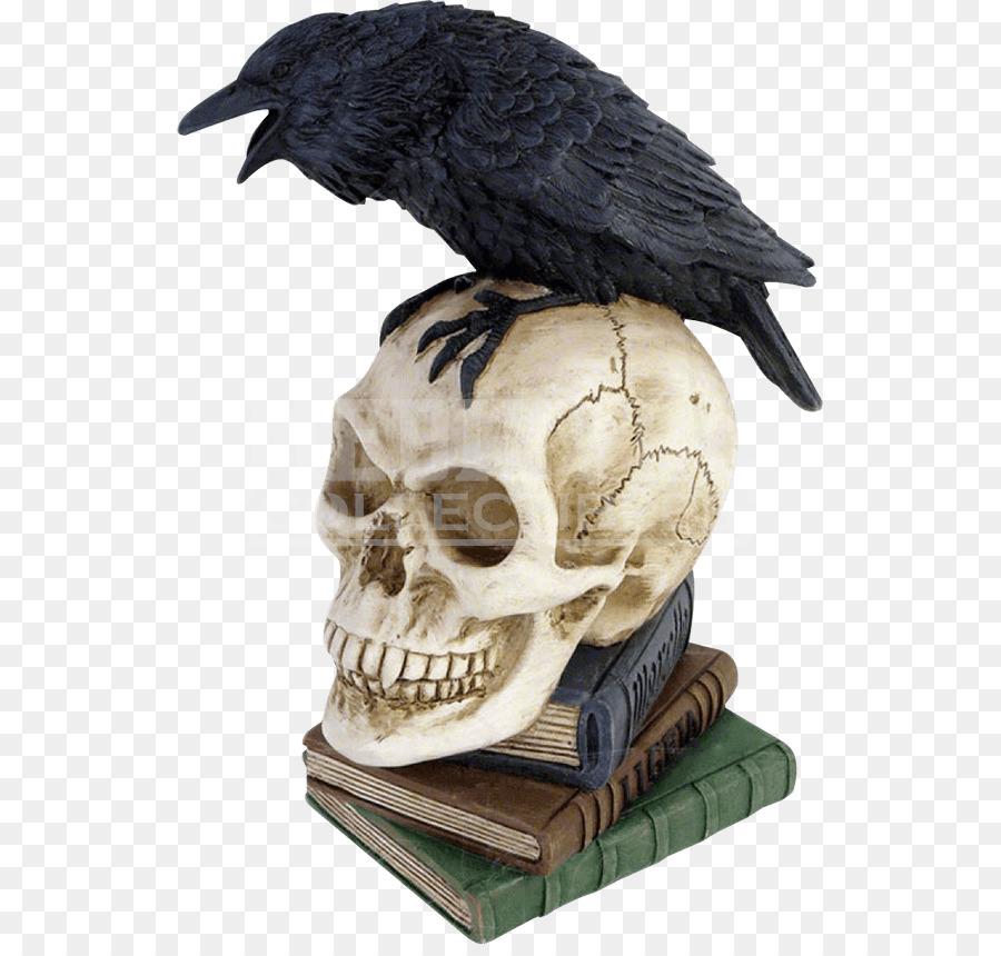 фото ворона на черепе международным днем мужчин