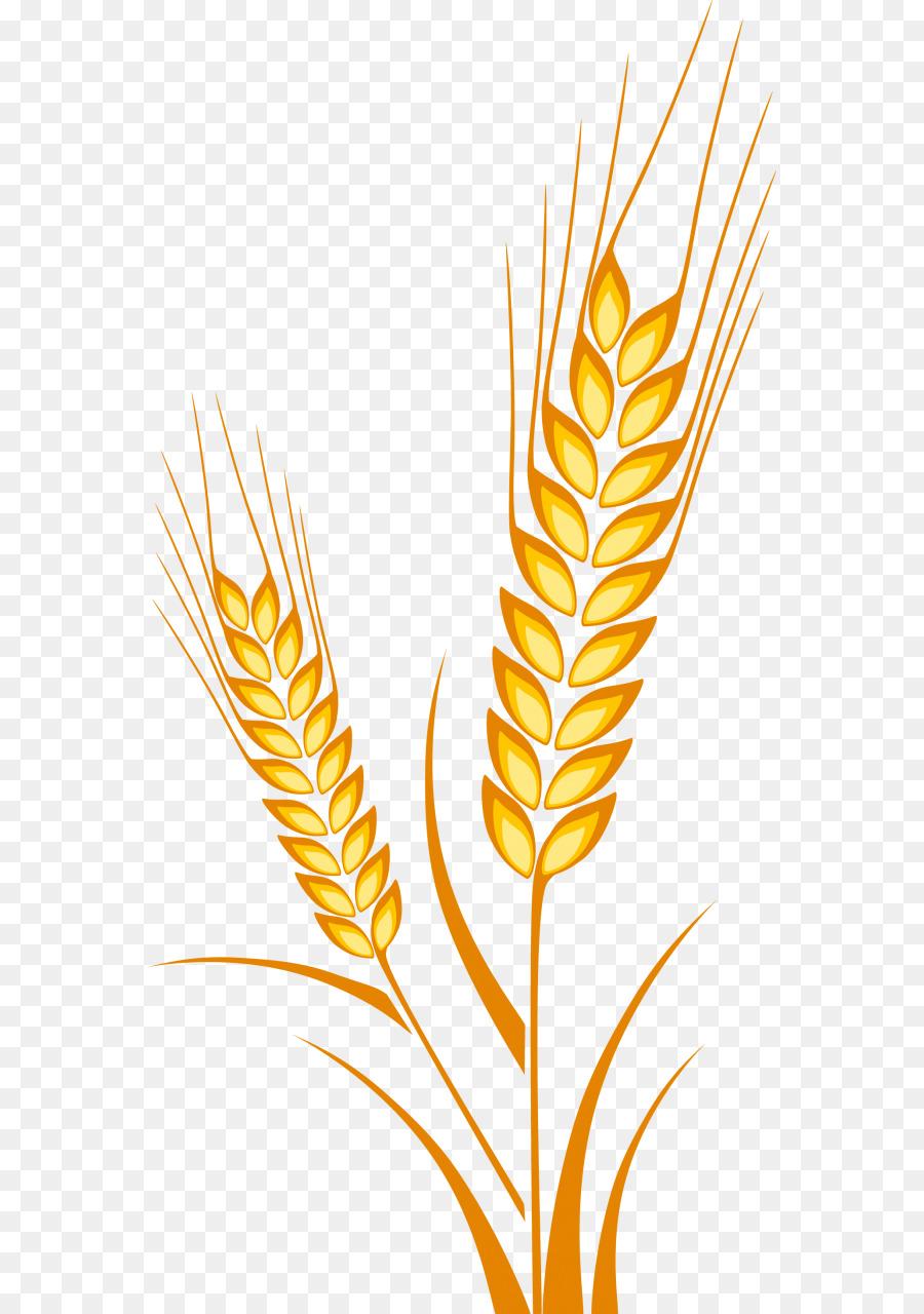 распечатать картинки пшеницы лондоне создал все