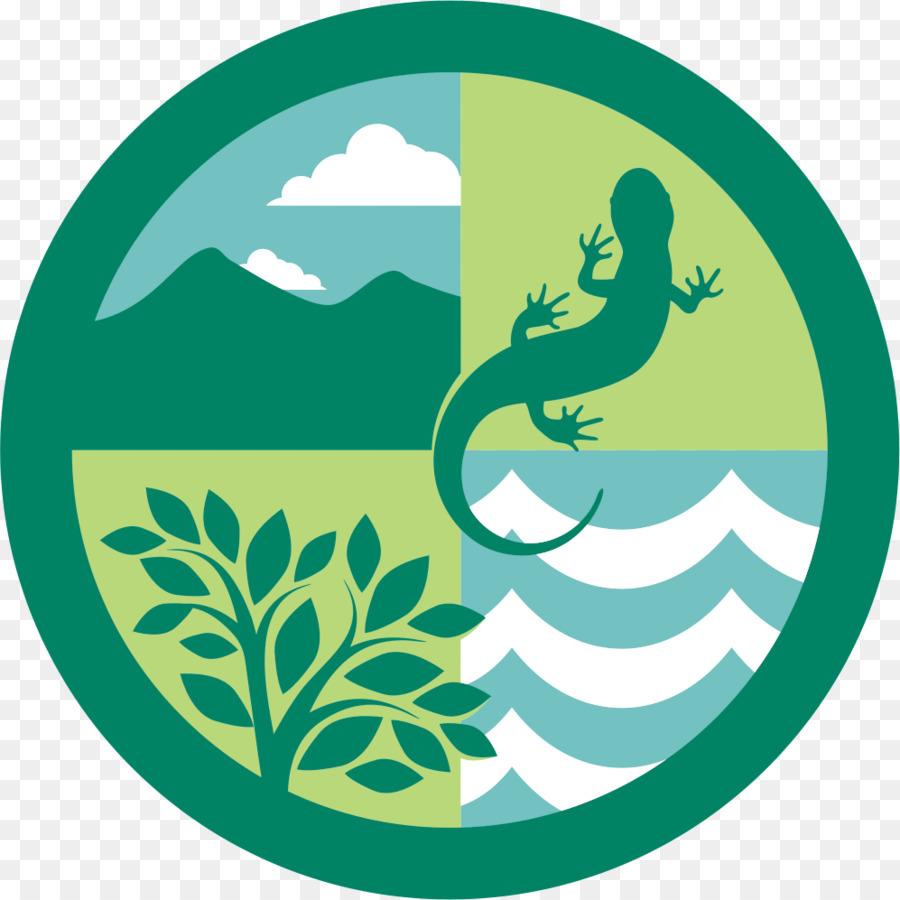 логотипы картинки природа для вас