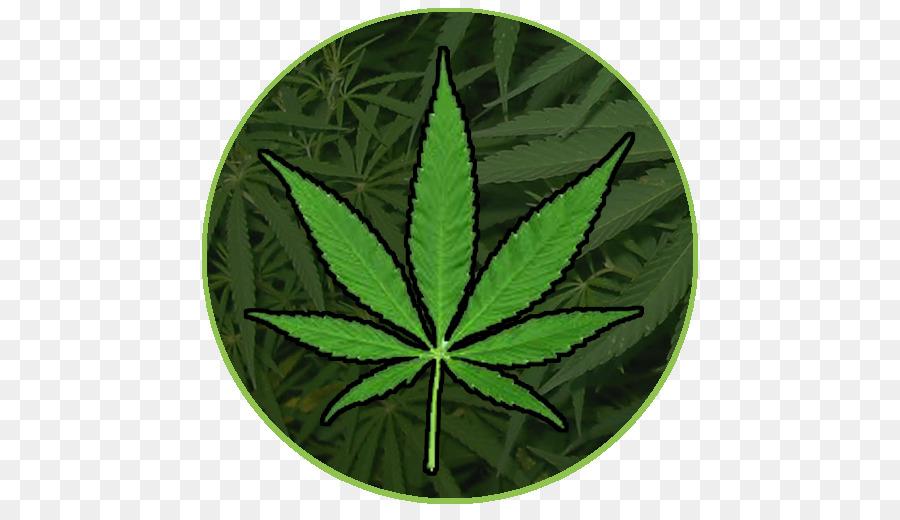 Смайлик марихуаны наполнитель из конопли