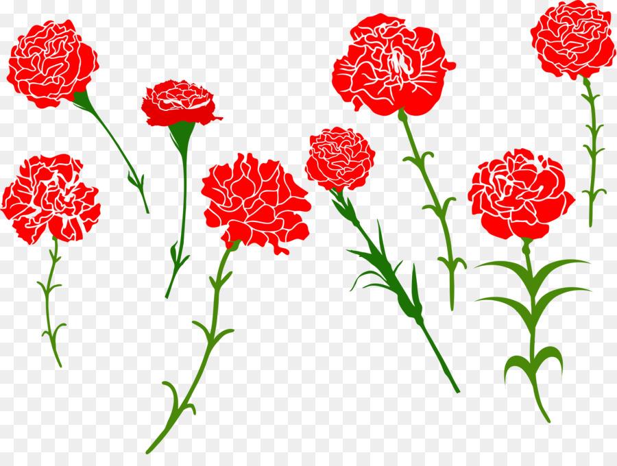 Картинка цветов гвоздики для вырезания