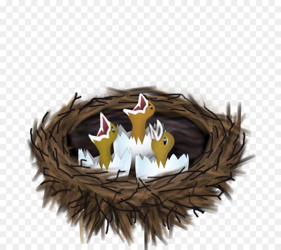 Картинка гнездо с птенцами для детей