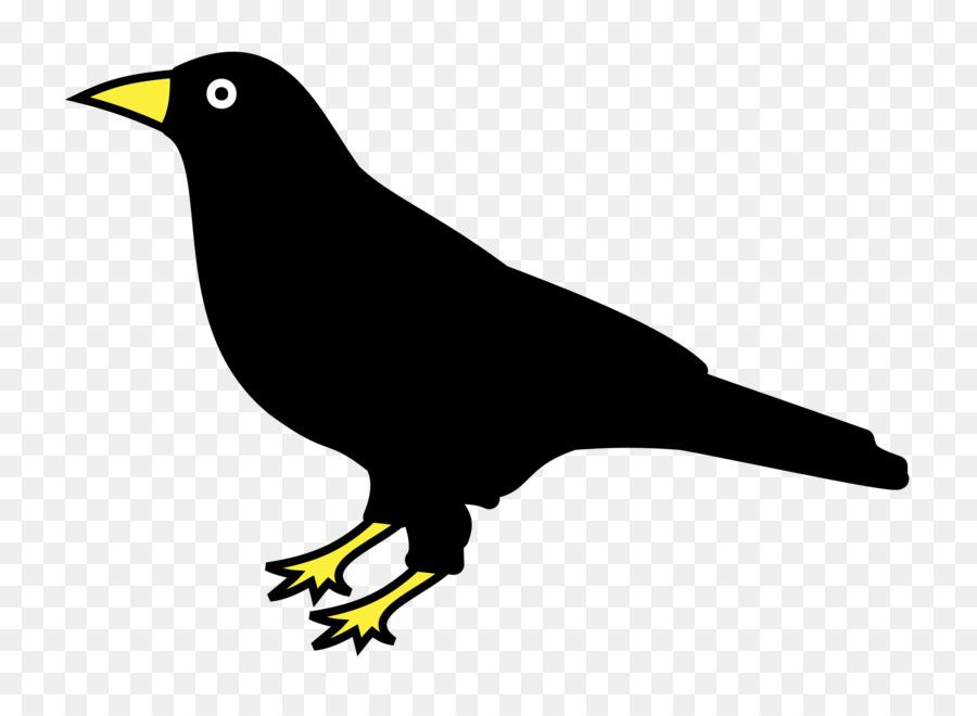 Нарисованная картинка ворона