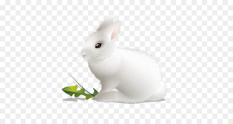 Картинка белый зайчик на прозрачном фоне