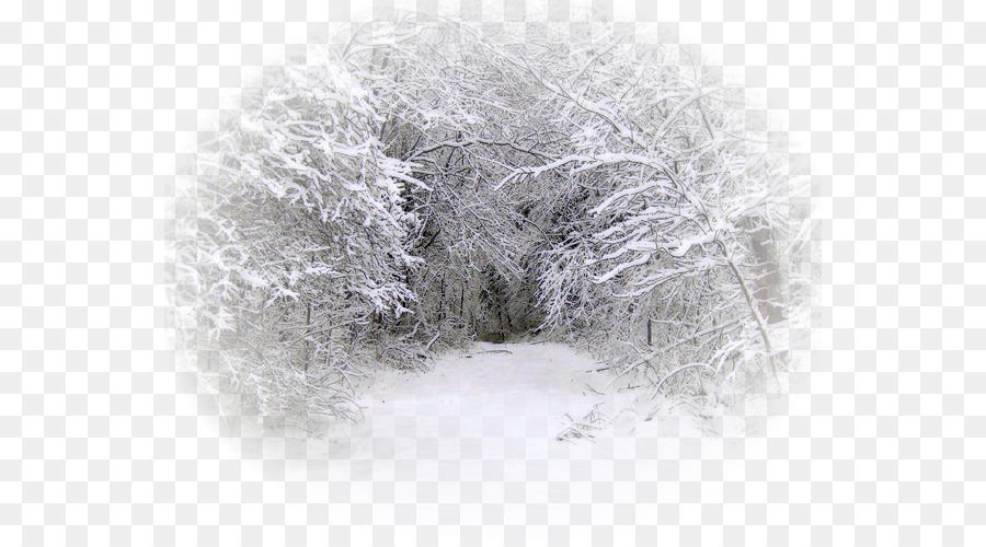 рубашечных картинки снега на прозрачном фоне нас продаже
