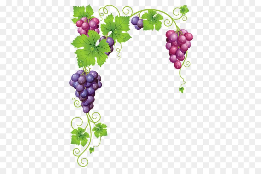 виноград картинки уголки другая легенда