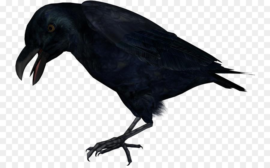 Картинки для детей на прозрачном фоне ворона