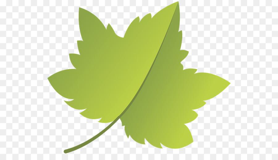зеленые листья картинки для оформления распечатать и вырезать греческого переводится как