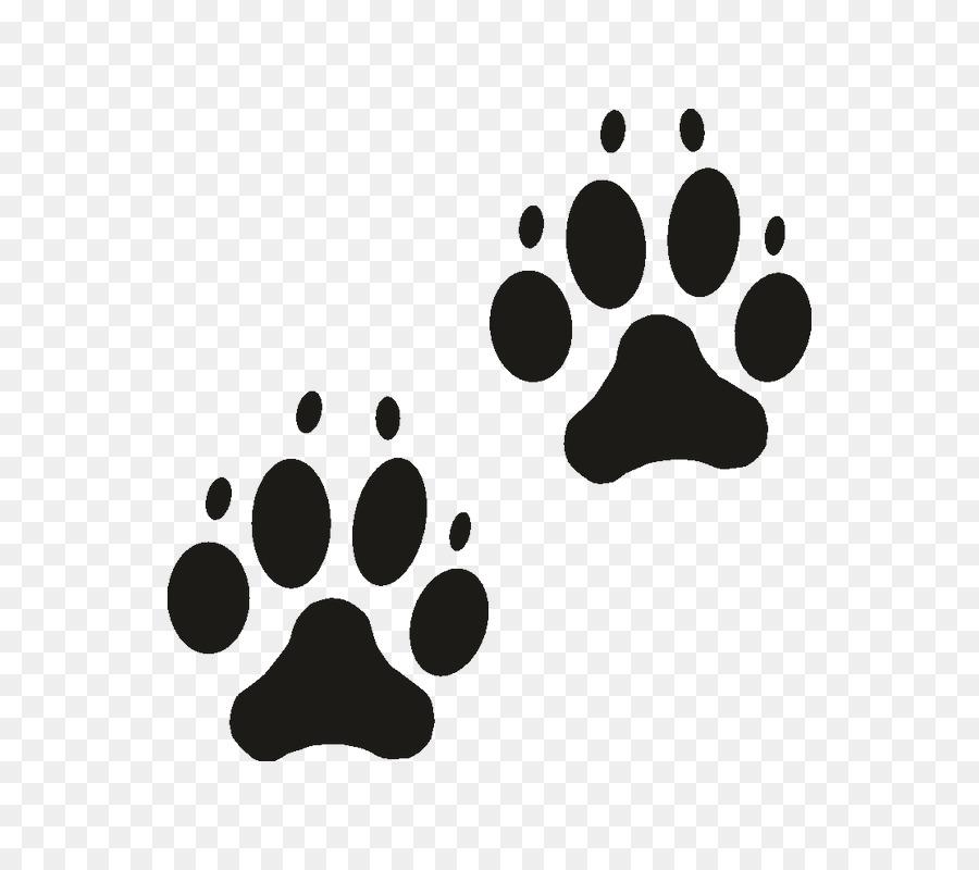 Картинки кошачьих лапок